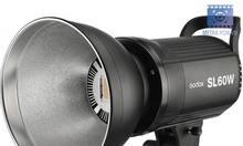 Cho thuê đèn Godox SL60 kèm Softbox