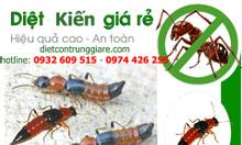 Dịch vụ diệt kiến ba khoang giá rẻ