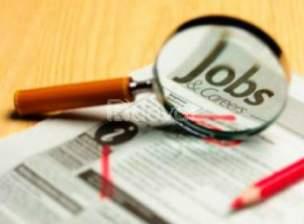 Cần tuyển nhân viên làm việc tại Lâm Đồng