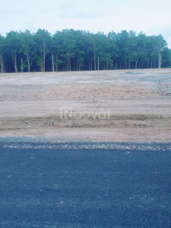 Gia đình cần bán lô đất đường vào sân bay Tecnic, Hớn Quản