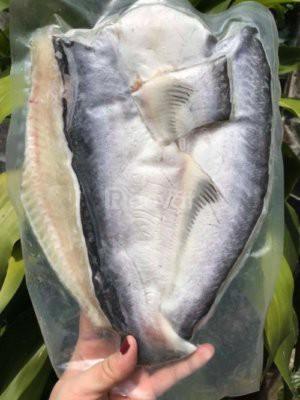 Cá dứa nuôi, cá basa