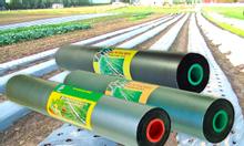Màng phủ nông nghiệp chất lượng cao, màng phủ đất