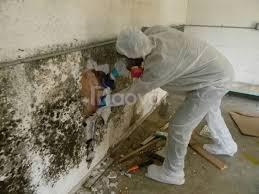 Lăn sơn sửa chữa, xây dựng, chống thấm dột, trần tường
