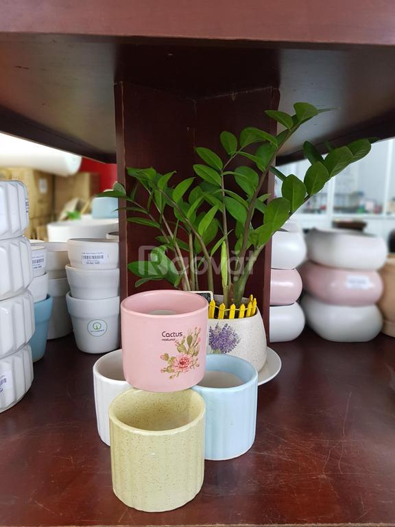 Gốm sứ xây dựng Quận Tân Phú