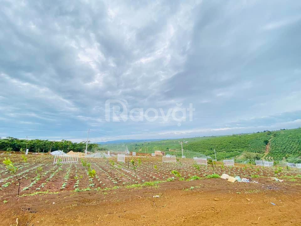 Đất full thổ cư Bảo Lộc