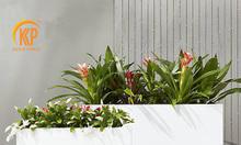 Chậu trồng cây composite KKP 11233 cao cấp