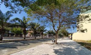 Mở bán 19 nền đất khu dân cư Tên Lửa 2 gần siêu thị Aeon Mail Bình Tân