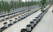 Nhà sản xuất và cung cấp bạt trải nền tại Hà Nội