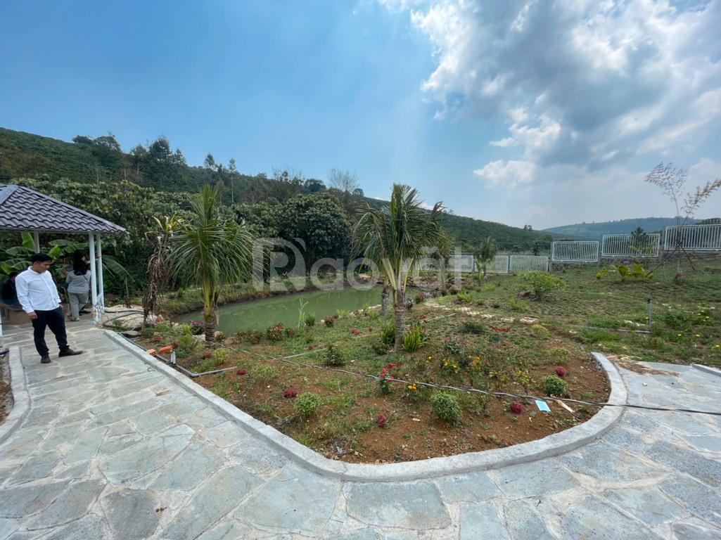 Đất thổ cư đối diện Đồi Chè Tâm Châu, Bảo Lộc