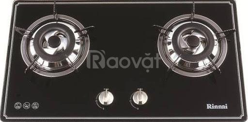 Bếp gas âm Rinnai RVB-2BG(B)N