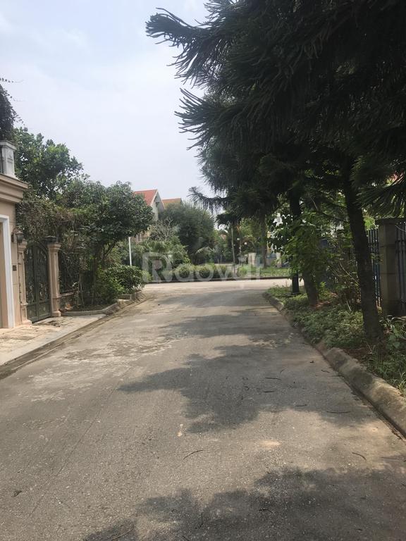 Bán gấp biệt thự XT 344m2 đường Vĩnh Phúc khu ĐTM Quang Minh Long Việt