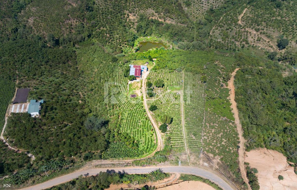 Mặt tiền đường BLao xã Lộc Thành, Bảo Lộc cách QL20 10km 1000m2 thổ cư