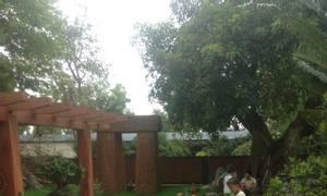Cung cấp thi công sân golf mini trong nhà, ngoài trời, sân thượng