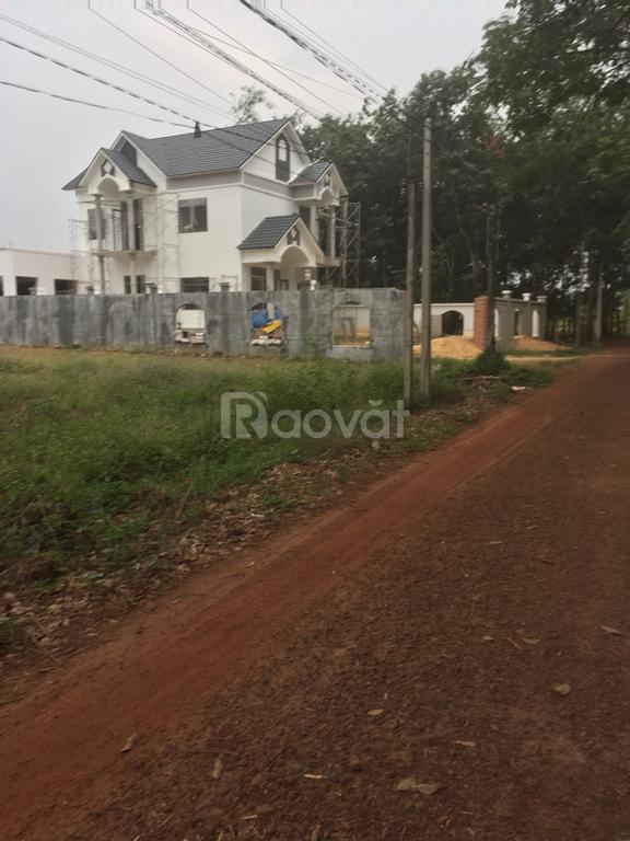 Bán gấp lố đất 400m2 chính chủ giá rẻ tại xã Bến Củi, Tây Ninh