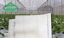 Tác dụng của bạt trải nền trong nông nghiệp, bạt trải nền giá tốt