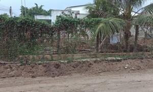 Chính chủ cần bán 4 lô đất mặt tiền Châu Thành, Tây Ninh, thổ cư 100%
