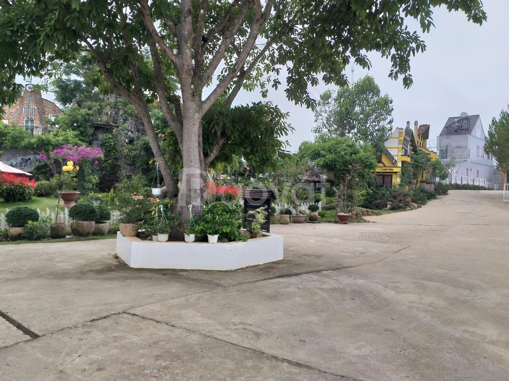 Bán đất thị trấn Đinh Văn, Lâm Hà Lâm Đồng, ngay trung tâm hành chính