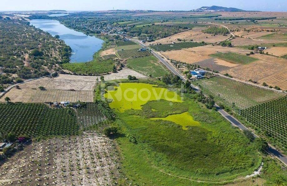 Cơ hội lớn đầu tư đất Bình Thuận ngay hôm nay