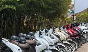 Thuê xe máy Mũi Né