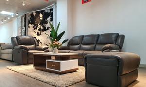 Mừng khai trương Thế Giới Sofa tại Phạm Văn Đồng