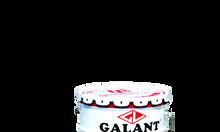 Nhà phân phối sơn dầu Galant giá rẻ tại Sài Gòn