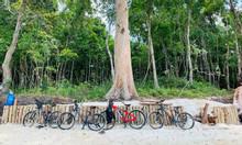 Chương trình tour xe đạp quanh vườn quốc gia Phú Quốc