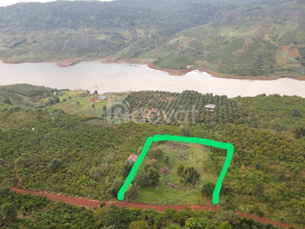 Quỹ đất đẹp có thể để nghỉ dưỡng và đầu tư Bảo Lộc