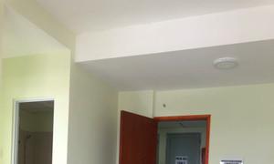 Cho thuê căn hộ trung tâm TP, Chung cư Khang Gia, P4, Q8