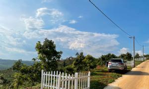 Chính chủ bán 525m2 hẻm 524 Trần Phú, Bảo Lộc