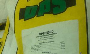 DPS tăng trọng đạm nội tạng