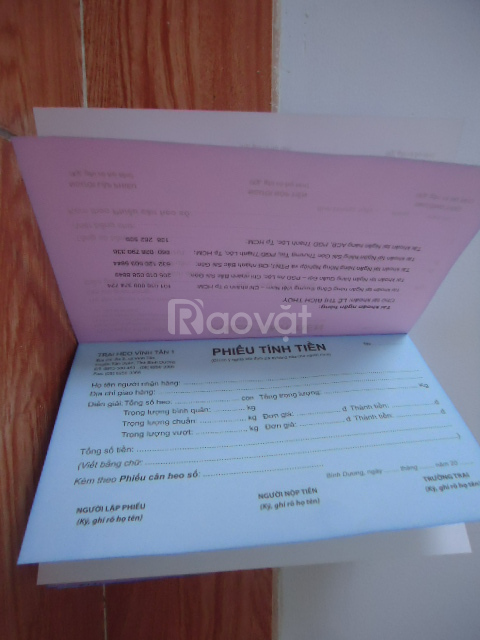 Thiết kế, in, gia công catalogue, folder, poster, hóa đơn, bao thư