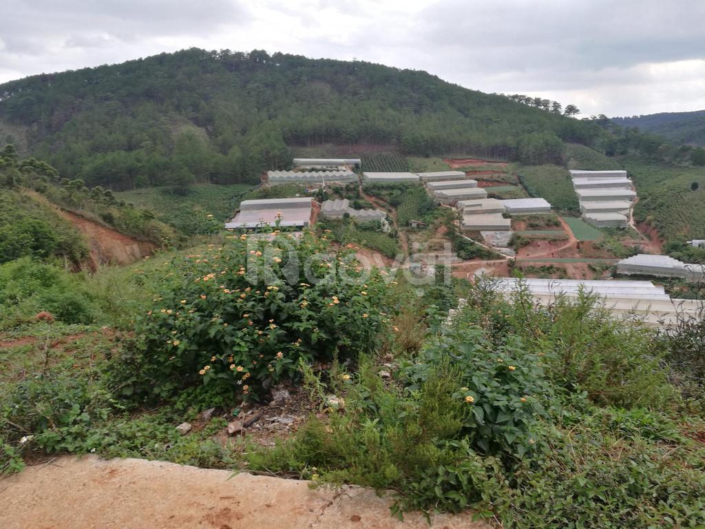 Đất Man Lin, phường 7, Đà Lạt 210m