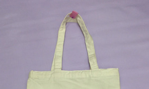 Công ty Nguyên Thiệu cung cấp túi vải không dệt, túi vải quai xách