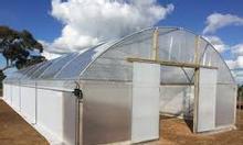 Màng nhà kính Politiv Israel, trồng dưa lưới trong nhà kính
