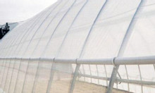 Lưới chắn côn trùng Politiv israel, lưới côn trùng