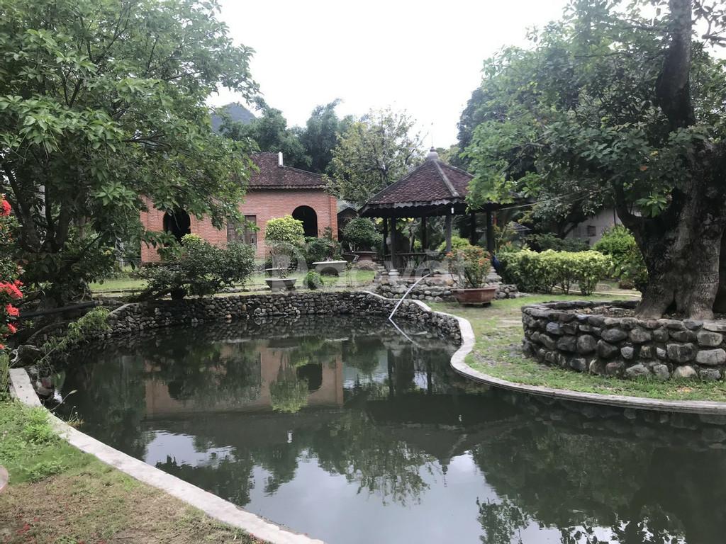 Biệt thự sân vườn tâm huyết với dàn cây cảnh khủng