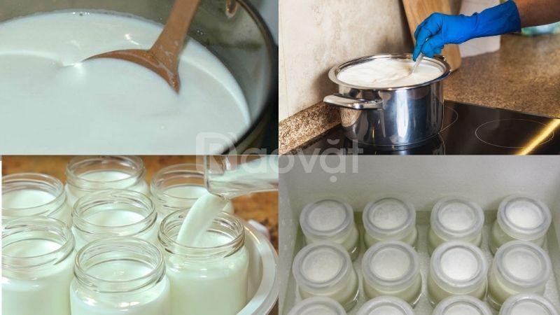 Sữa chua trân châu nước cốt dừa Hạ Long tại nhà ngon như cửa hàng
