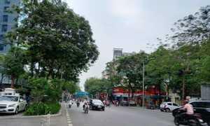 Bán tòa nhà đẳng cấp phố Thái Hà 416m2, mặt tiền 25m