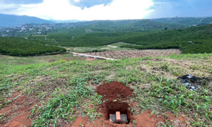 Do cần tiền lo công việc bán gấp 508m2 đất hẻm Trần Phú TP Bảo Lộc