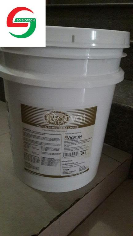 Yucca nước, yucca bột, Yucca Mexico 100% nguyên liệu giá sỉ lẻ