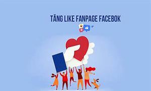 Cách tăng like fanpage FB nhanh