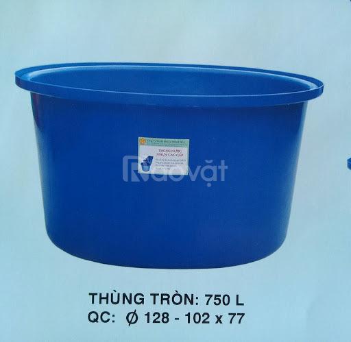 Thùng nhựa tròn làm bể bơi, nuôi cá