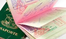 Dịch vụ visa nhập cảnh, gia hạn visa