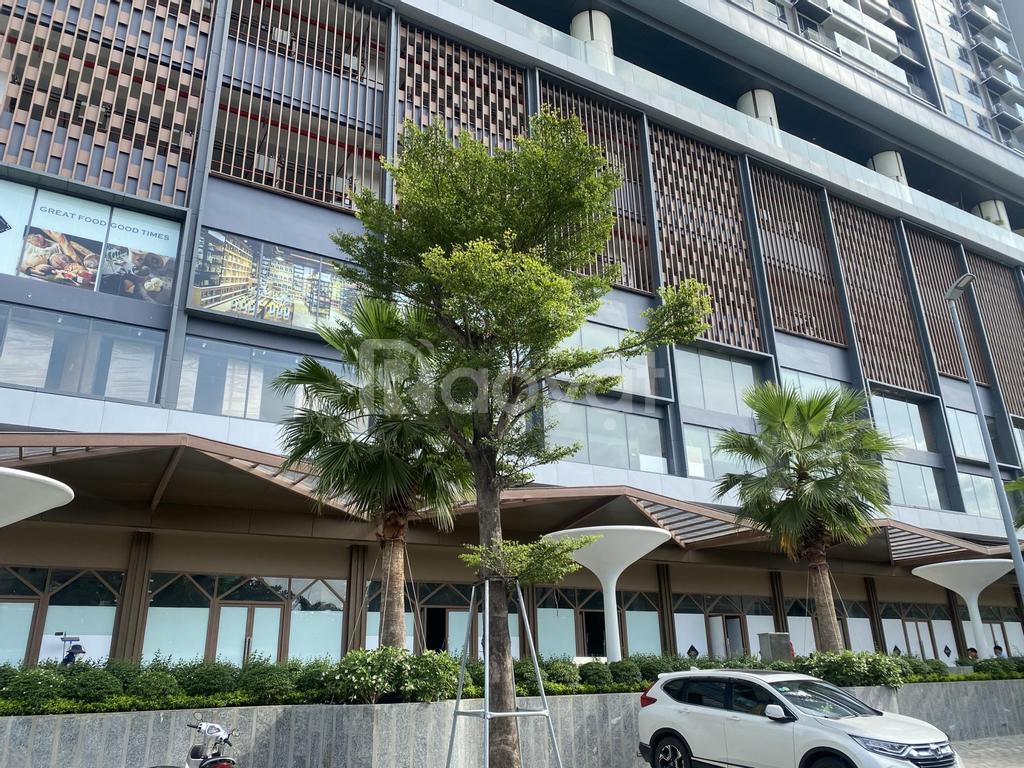 Bán Shophouse Q2 Thảo Điền 271m2, tiện đầu tư kinh doanh