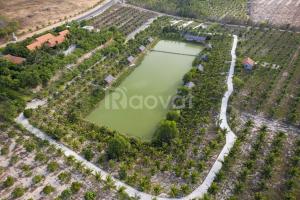 Bán lô đất vị trí cách DT176 500m gần Nova, Bàu Trắng