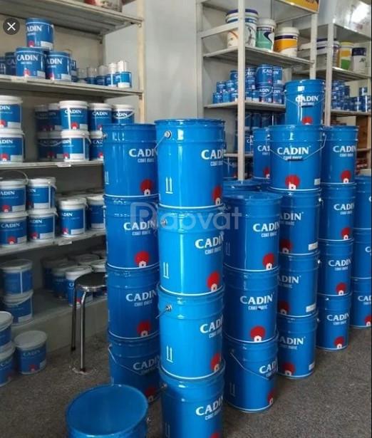 Cửa hàng sơn dầu gốc nước không mùi chính hãng giá rẻ tại TPHCM