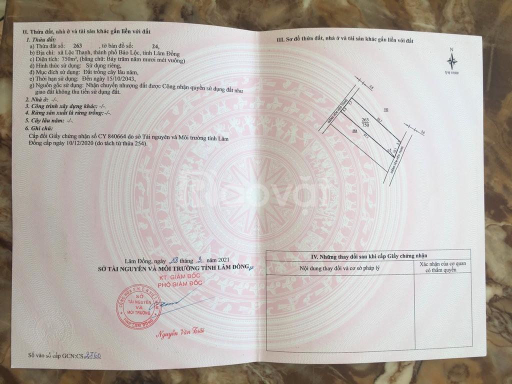 Chính chủ còn 03 căn liên kế hẻm 524 Trần Phú, Lộc Thanh, TP. Bảo Lộc