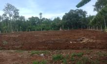 Chính chủ bán nhanh lô đất 2,200m2 có thổ cư, sổ riêng