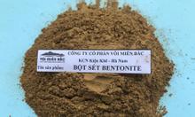 Bột đất sét Bentonite