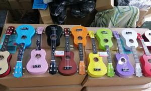 Cửa hàng ukulele gỗ giá rẻ tại Gò Vấp TPHCM